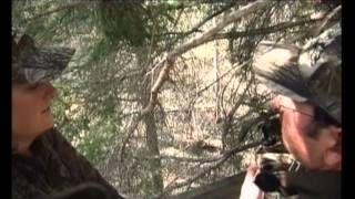 Смотреть онлайн видео Охота на черного медведя в Альберте