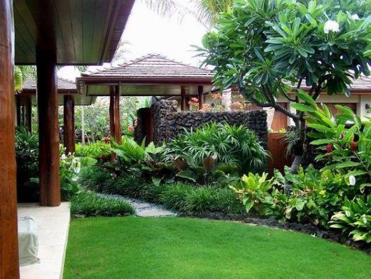 Jardim tropical: muro