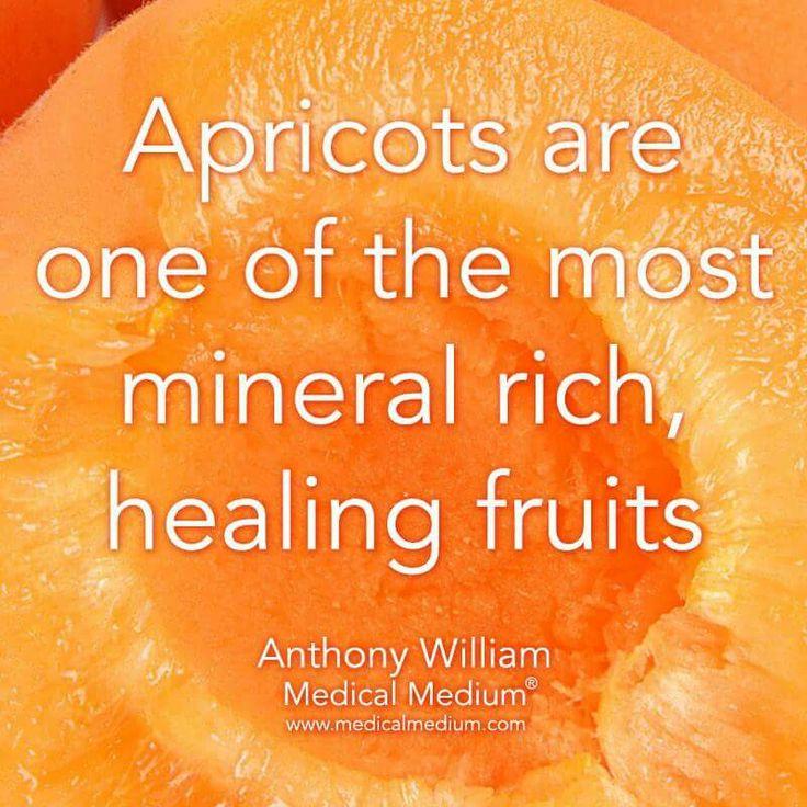 Apricots  healing