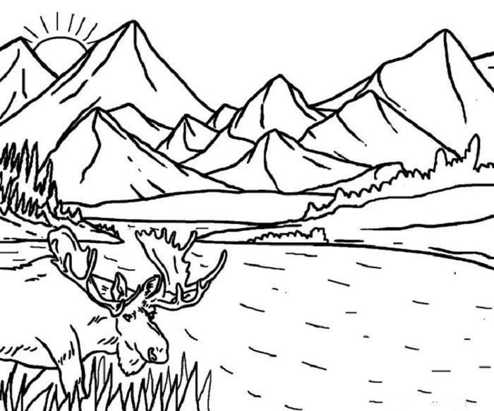 Nature Coloring Pages For Kids Naturepagesforkids