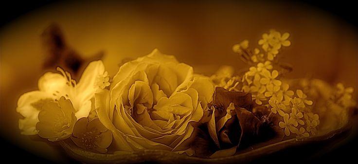 http://img.fotocommunity.com/images/Emotionen/Romantik/Die-Epoche-der-Romantik-a28005637.jpg