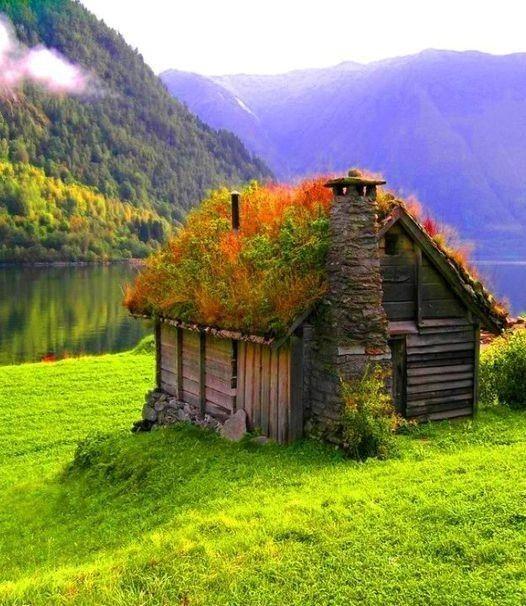 586 best Toiture végétalisée (Green Roof) images on Pinterest