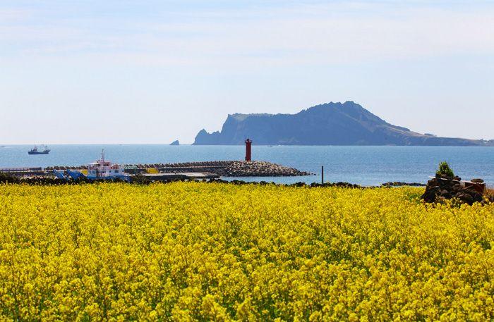 Recargue energía en Jeju durante 2 días y 3 noches
