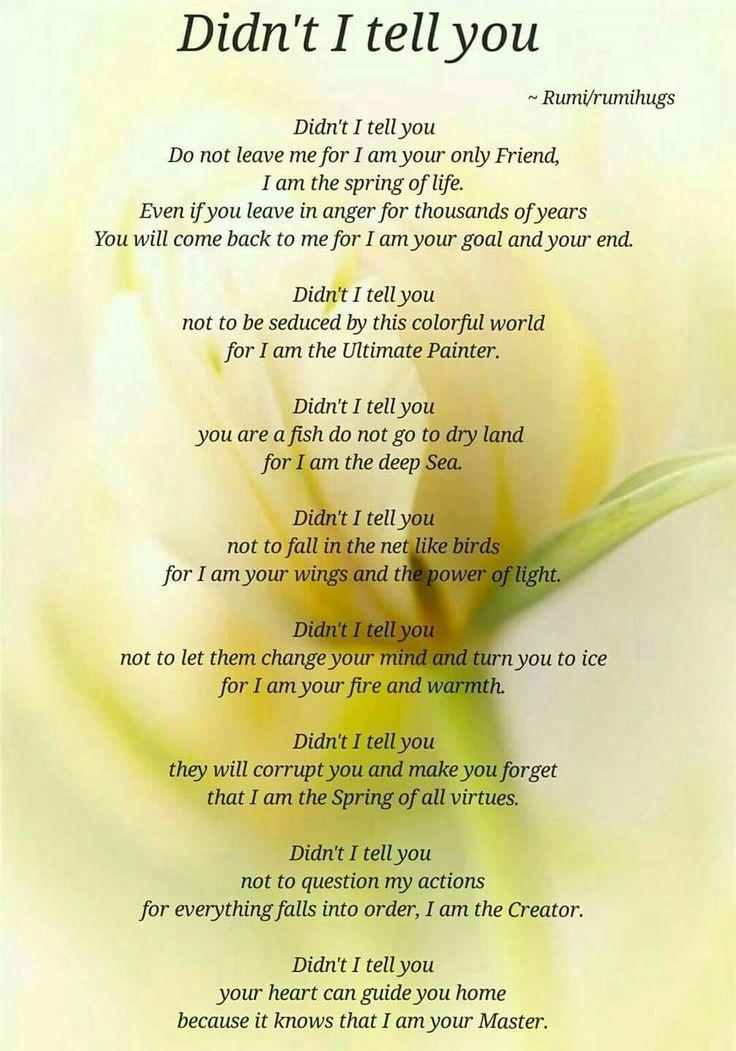 Didn't I tell you? - Rumi | Rumi love quotes, Rumi love ...