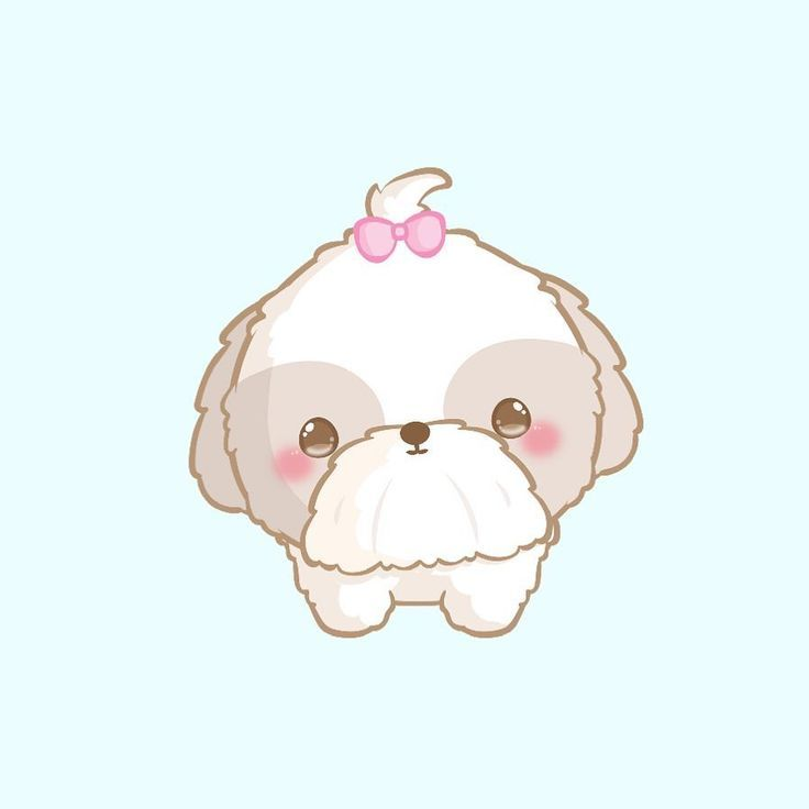 Simple Super Cute Shitzu Puppy Dog Doodle Such And Adorable