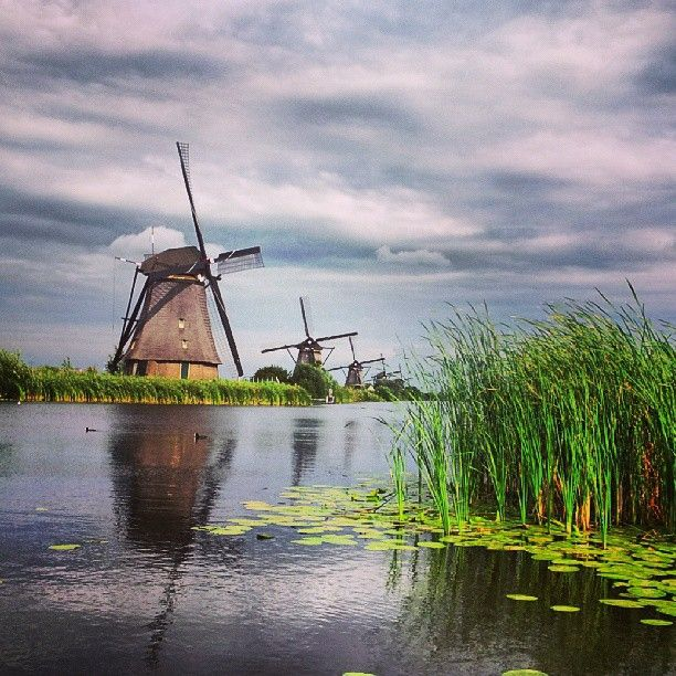 """More than 1.000 old windmills still exist in the Netherlands. The largest concentration of Dutch windmills can be found near the village of Kinderdijk (""""Children's dike""""). To drain the excess water from the polders, which are situated below sea-levels, 19 windmills were built around 1740. They have been well preserved to the present day and are now popular tourist attractions in the Netherlands."""