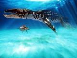 Liopleurodon jpg
