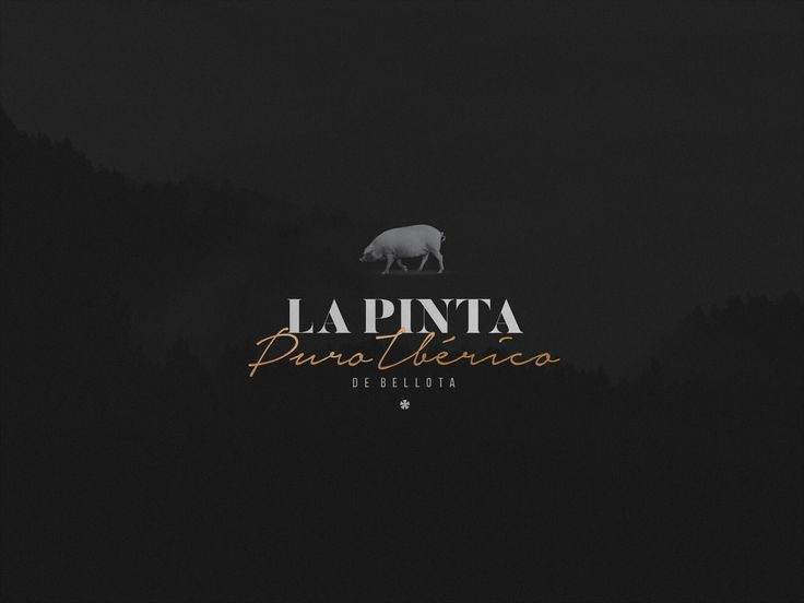 In 2018, La Pinta will launch its products with a visual identity that preserves the tradition and the quality of the Iberian products. Genuine sausages, from a protected designation of origin, showed through a design that demonstrates the legacy and cul…