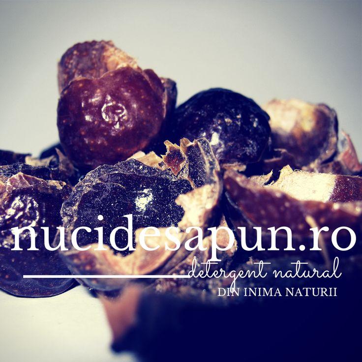 Nucile de sapun au o multime de forme de utilizare. Cititi mai mult despre asta http://www.nucidesapun.ro/content/9-detergent-de-rufe