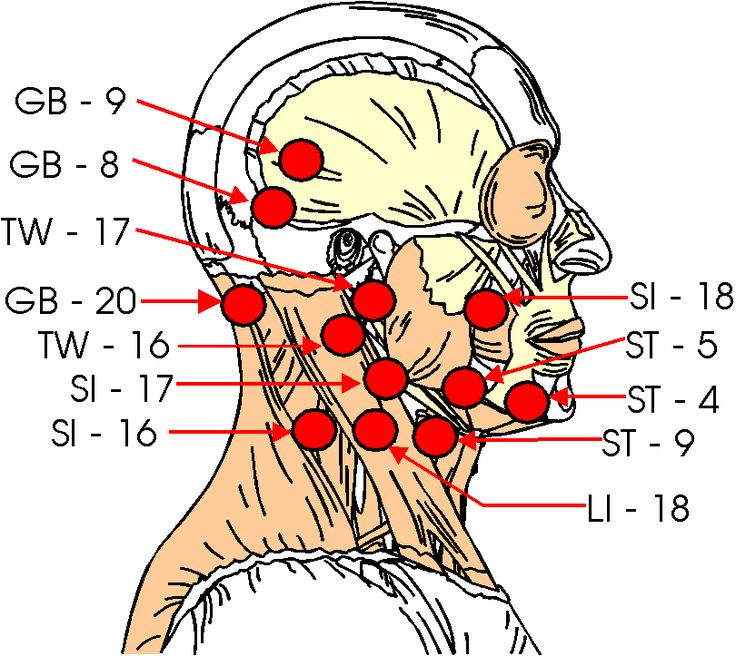 Kyusho Pressure Points Side Of Head Martial Arts