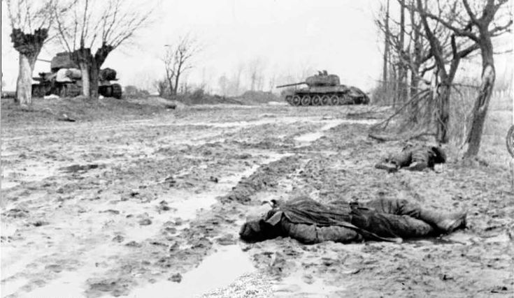 FEB  1 1945 Wounded – a lucky escape from the Eastern front - See more at: http://ww2today.com A German picture of the aftermath of battle on the Eastern front in February 1945, with Soviet dead and destroyed T-34 tanks.
