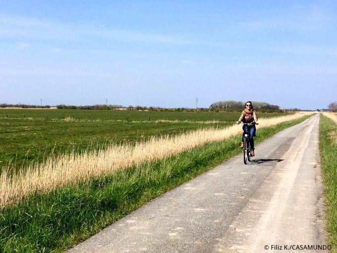 Ich auf meiner Radtour durch die Marschwiesen auf Föhr