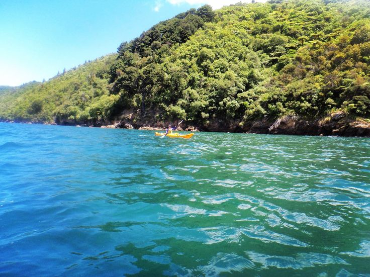 Want to feel small? Kayak the Queen Charlotte Sound, New Zealand.  Taking on the adventure of life...