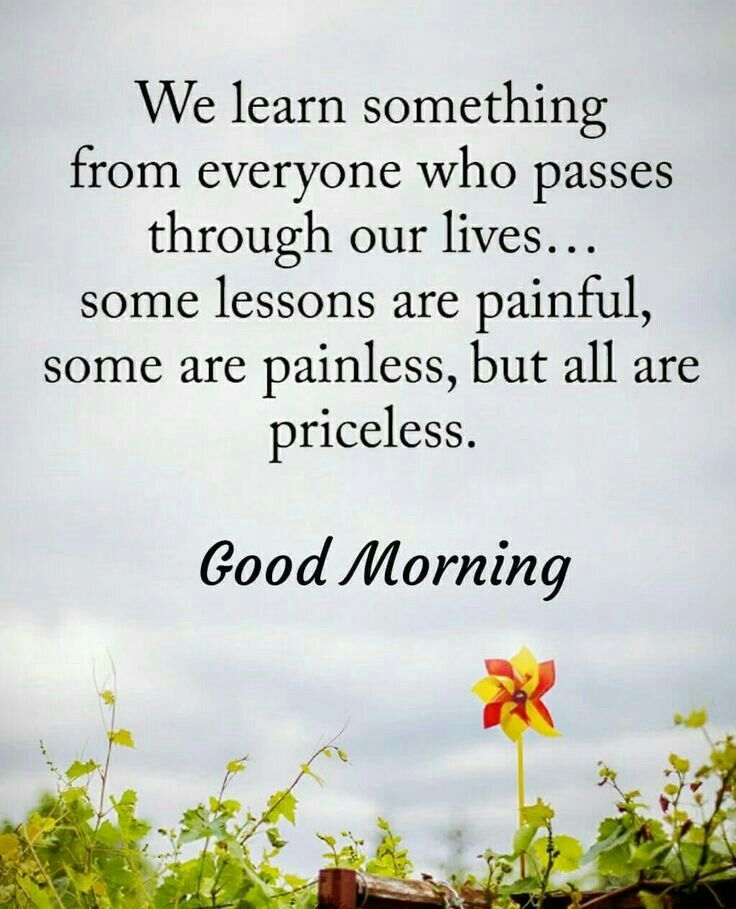 Pin By Sreevenireddy On Good Morning Pinterest Morning Quotes