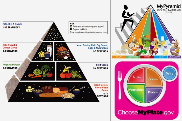 Images Of Food Pyramid And MyPlate