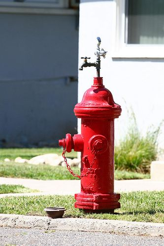 hydrant drinking fountain - Szukaj w Google