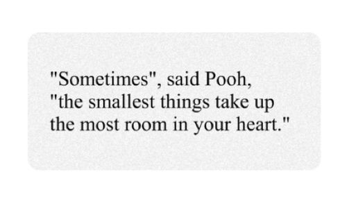 Winnie the Pooh: Inspiration, Pooh Quotes, Poohbear, Pooh Bears, Wisdom, Winniethepooh, Winnie The Pooh, Living, Smallest Things