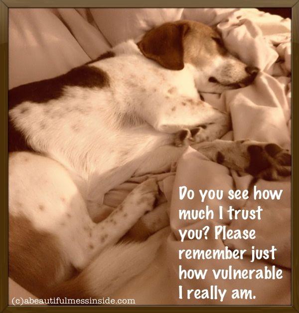 Inspirational Quotes, trust: Precious Pets, Puppy Love, Inspirational Quotes, Puppies Puppy Quotes, Animal