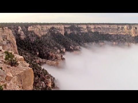 Best Awesome Landscapes Images On Pinterest Landscapes - Rare weather event fills grand canyon with fog and gives us this breathtaking sight