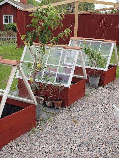 20 Repurposed Window Greenhouses