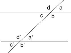 Relazioni tra coppie di angoli formate da rette parallele tagliate da una trasversale.