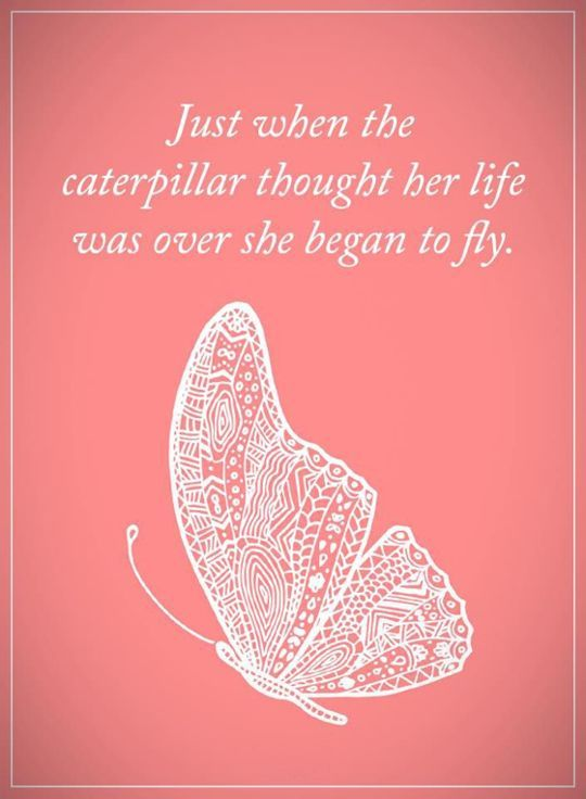 "Positive Quotes About Life: Life Sayings When She began To Fly    Inspirational words of encouragement ""Notice the people who make an effort to stay in your life."" Encourage Quotes about ....   #best quotes about life #encourage quotes #inspirational word https://www.musclesaurus.com"