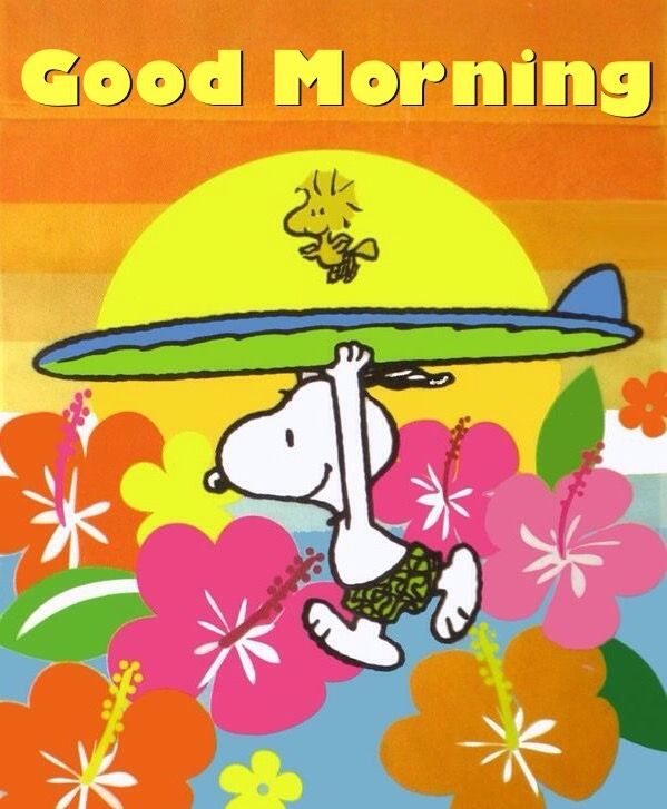 Good Morning Beautiful Brown Ale : Best snoopy good morning images on pinterest beagles