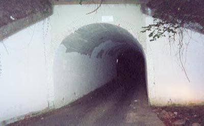 "There are many variations to the ""Bunny Man Bridge"" legend, but most involve a man wearing a rabbit costume (""bunny suit"") who attacks people with an axe. Story variations include the origin of the Bunny Man, names, motives, weapons, victims, description of the bunny suit or lack there of, and the possible death of the Bunny Man. In some accounts, victims' bodies are mutilated. See Also: ""Legend Tripping"" #JetsetterCurator"