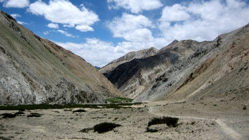 Markha Valley Trek in India