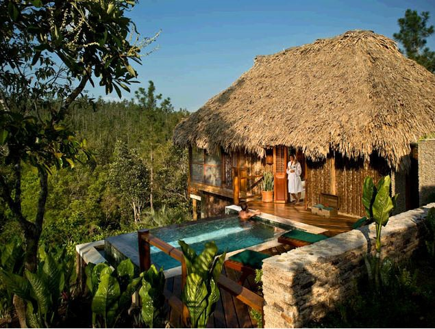 Have you ever seen a jungle shower in a Belize treehouse ...  |Belize Treehouse Accommodation Near Beach