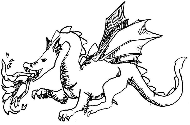 die 25 besten drachen ausmalbilder ideen auf pinterest