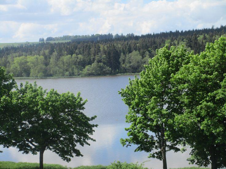 Rybník a lesy - Žďársko - kraj Vysočina