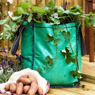 Potatoes & sweet potatoes can be planted in 'grow bags' - lightweight low-cost bags with handles (or upcycle an old sack around a wire frame) ... great for small spaces, renters & those wanting a small crop of spuds. | The Micro Gardener