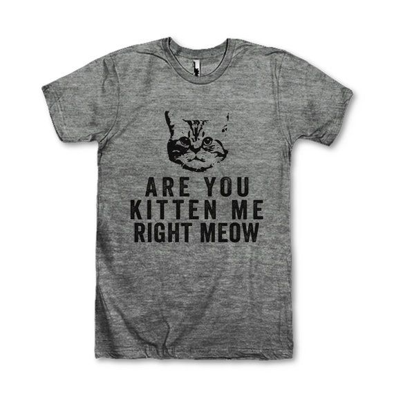 Are You Kitten Me Right Now by AwesomeBestFriendsTs on Etsy
