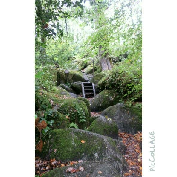 Secret Garden (https://www.picfair.com/misspinky)