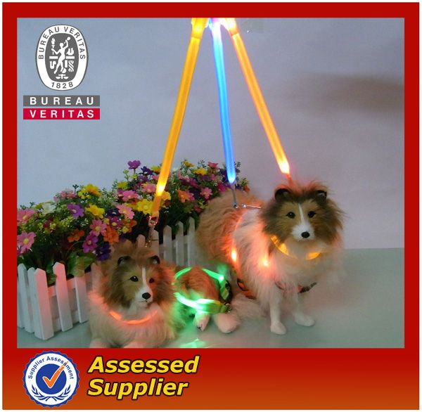 #glowing in dark dog leashes and collars, #electric dog leash, #belt buckle adjustable dog collar and leash