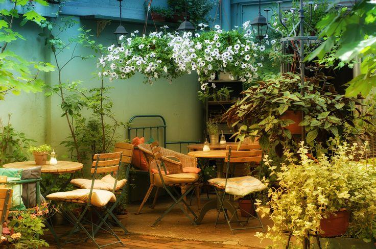 Pośród ogrodu...