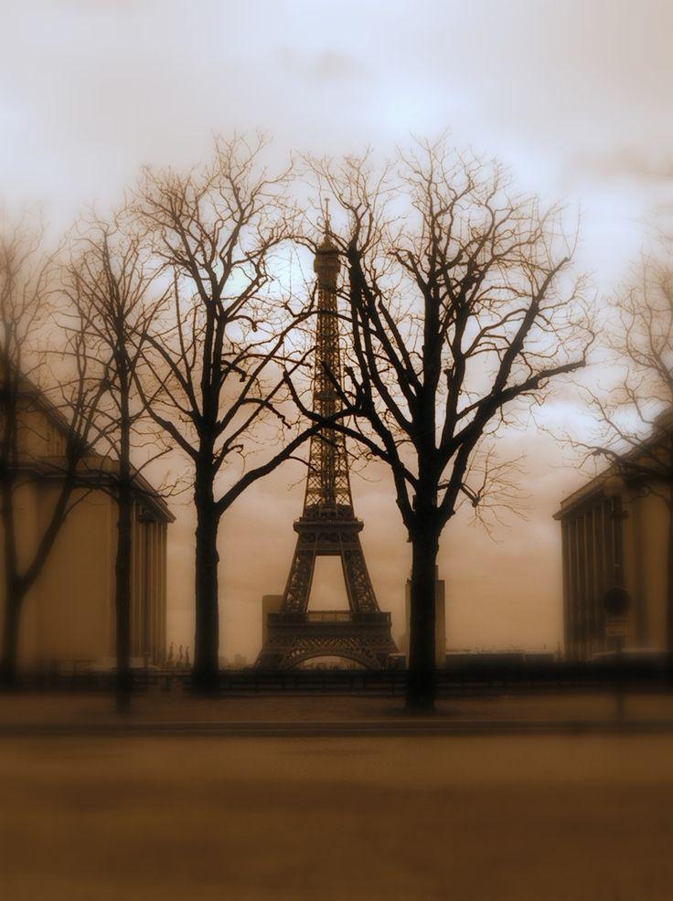 Plac Francuski zaprasza