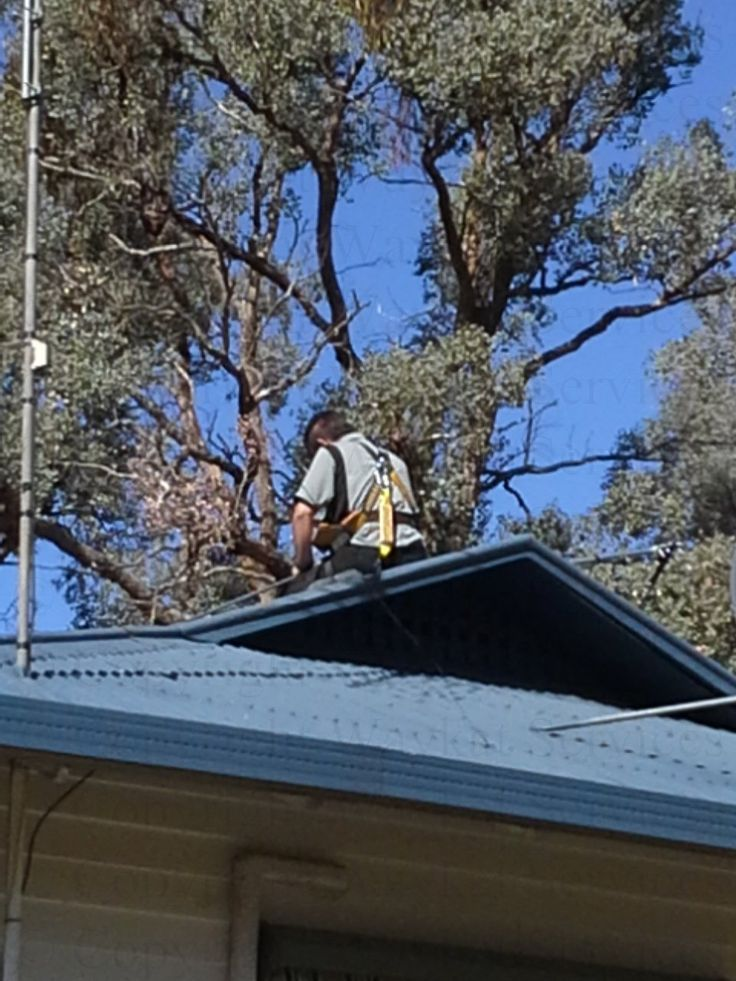 A Waykat Services network engineer on the roof of the building higher up the valley in full safety harness as the roof was not only very slippery but also quiet high pitched, At Waykat Services safety for our staff and other people is an absolute priority.