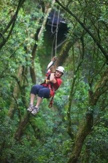 Karkloof Canopy Tours - Karkloof Canopy Tours offers an unequalled experience to zip line in the indigenous Karkloof Forest. Safely harnessed in mountaineering equipment and under the close supervision of a professional team of guides, prepare yourself for a Tarzan and Jane adventure that will take you among the birds and monkeys of this magnificent forest.