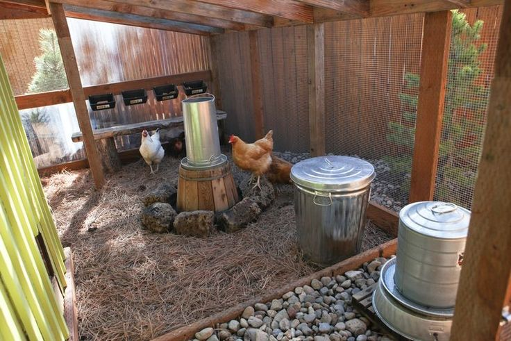 Clean Coop Tips. Love the raised water and feed to keep them clean.