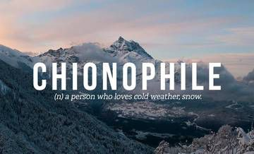 Chionophile. Potential for embroidering on denim jacket