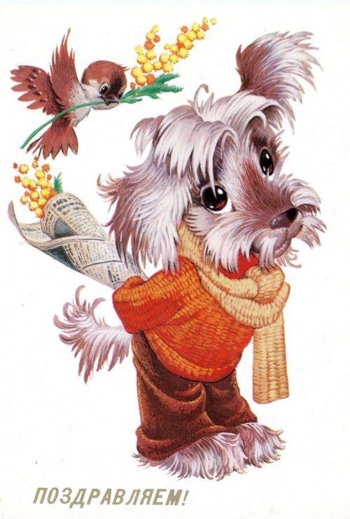 Имя с открытки. Владимир Иванович Четвериков (78 открыток)