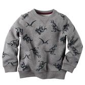 He's ready to roar in this soft, cozy sweatshirt. Pair it with denim for a dino-mite outfit!