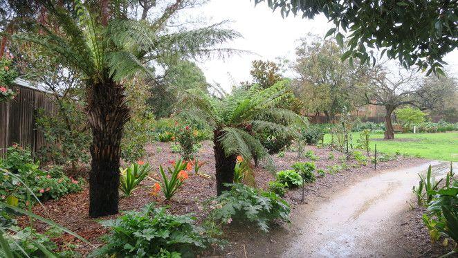 Park, Garden, Bayside, Bayside Garden, Bayside Park, Parks Melbourne, Melbourne Parks