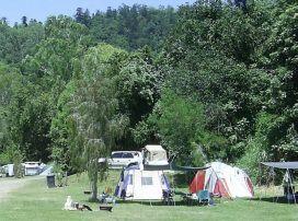 Camp at Borumba Deer Park, Balto allowed