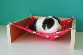 Comfy but low lying hammock
