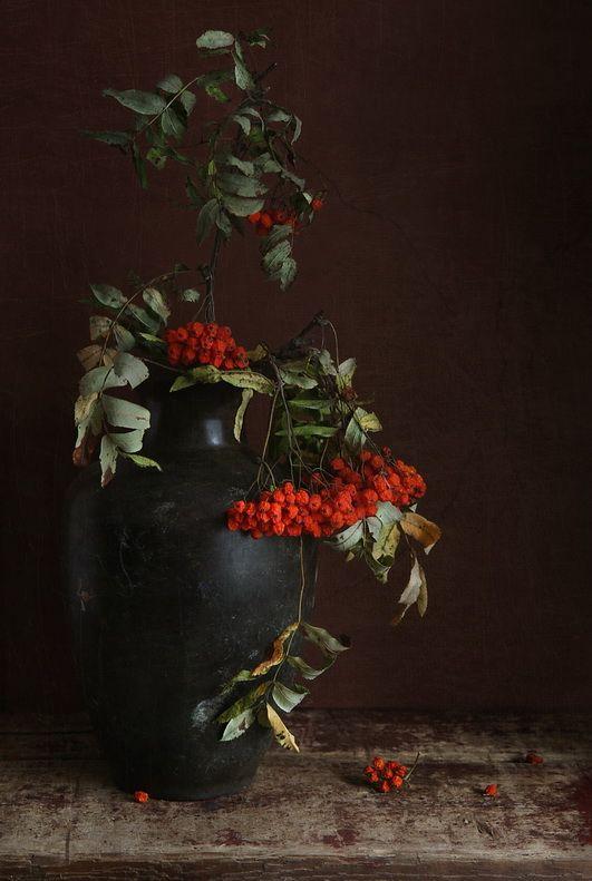 #still #life #photography • photo: Рябина | photographer: katrjunja | WWW.PHOTODOM.COM