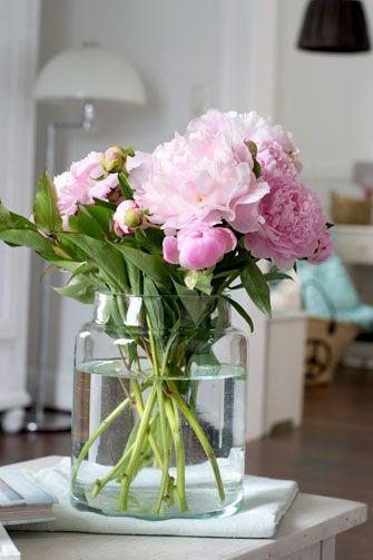 70 besten flowers bilder auf pinterest sommer deutschland und blumen. Black Bedroom Furniture Sets. Home Design Ideas