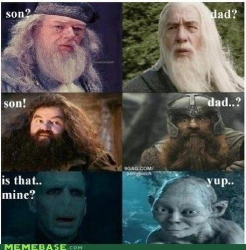 "<b>These are siriusly good.</b> All jokes via this Quora <a href=""http://www.quora.com/Harry-Potter-books-movies-and-creative-franchise/What-are-the-best-Harry-Potter-related-jokes?share=1"" target=""_blank"">thread</a>."